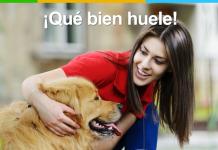 Evitar el olor a perro
